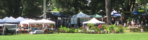 Bellingen Markets near Coffs Harbour - largest markets in Northern NSW