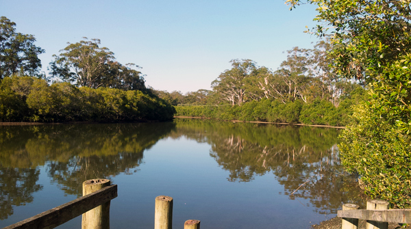 Serene Coffs Creek has you surrounded by nature