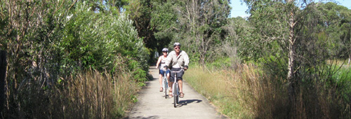 A tree-lined section of the Hogbin Drive cycleway, Coffs Harbour - Sawtell