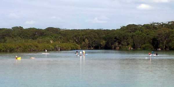 Stand-up paddleboarding on Coffs Creek in Coffs Harbour